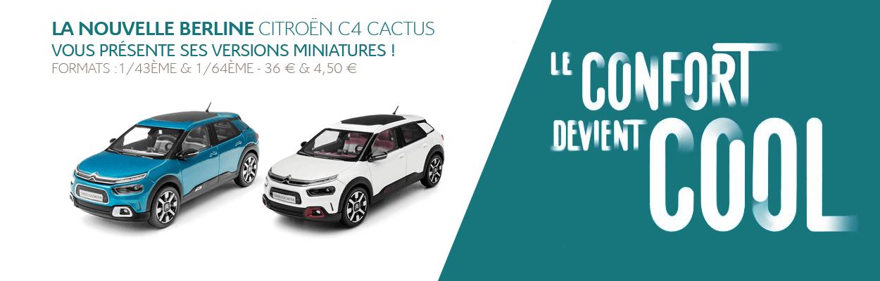 cactus-eboutique